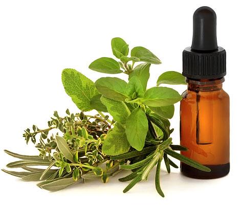 herbalism1